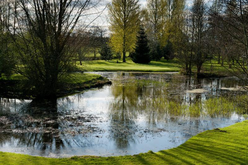 Butchers-pond