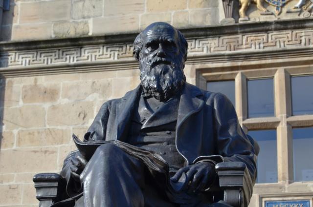 folk-273_darwin-statue