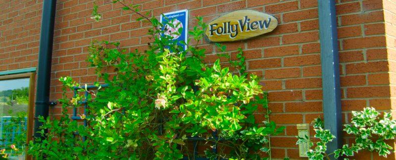 Folly-View-Honeysuckle